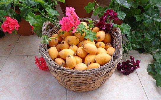 Fruits, Loquat, Flowers, Basket