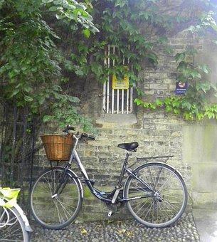 Cambridge, Brick Wall, Leaning, Bicycle, Rainy Day