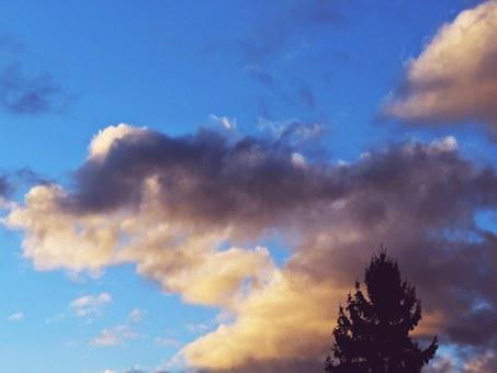 Clouds, Sky, Blue, Tree, Silhouette, Fir, Conifer, Mood