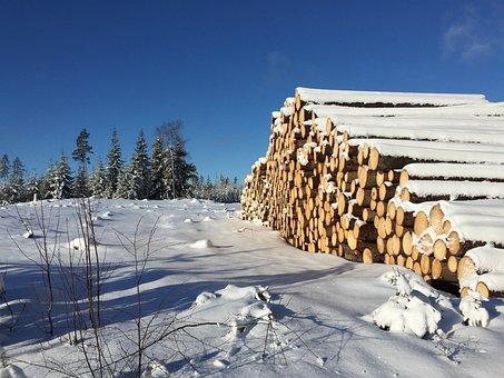 Winter Landscape, Finland, Felled Trees, Blue Sky, Blue