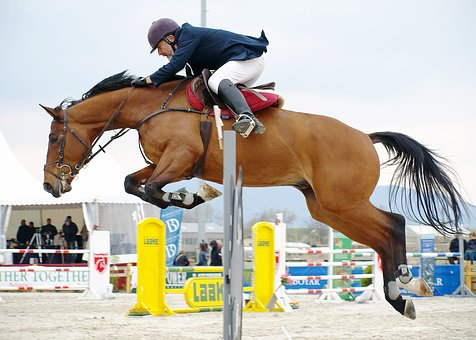 Horseback Riding, Horse, Leaping, Competition, In Air