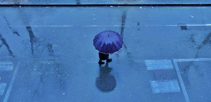Rain, Umbrella, Drops, Water, Rainy, Drizzling
