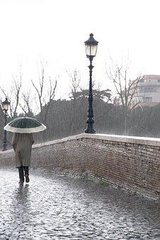 Rain, Water, Drops, Rainy, Rainy Day, Raindrops