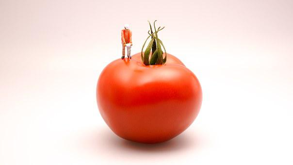 Tomato, Food, Kitchen, Cook, Cuisine, Red, Cooking