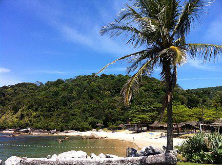 Itapema, Santa Catarina, Beach, Brazil, Nature, Mar