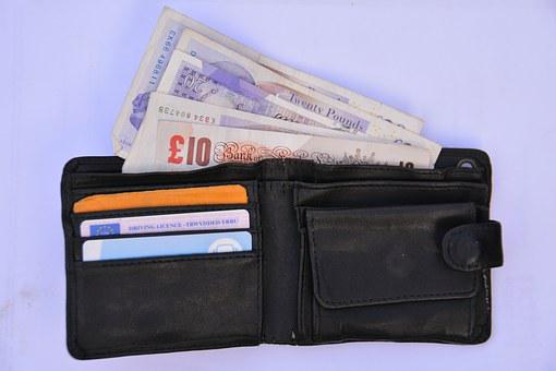 Wallet, Purse, Money, Finance, Cash, Open, Savings