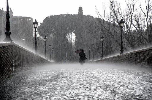 Rain, Wet, Drops, Water, Rainy, Rainy Day, Raindrops