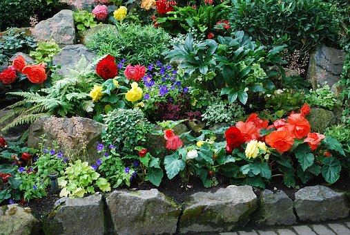 Butchart, Garden, Victoria, Plants, Nature, Flora