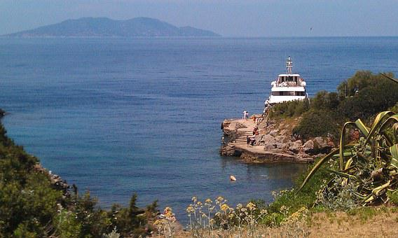 Island, Lily, Sea, Island Lily, Tuscany, Bay
