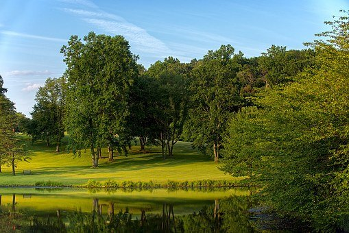 Virginia, Park, Tree, Scenic, Green, Outdoors