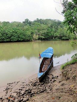 Canoe, Amazonie, Rio-napo