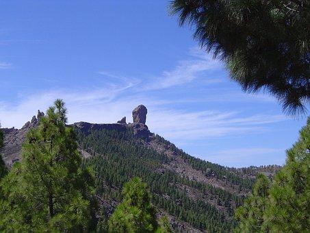 Roque, Pine, Gran Canaria