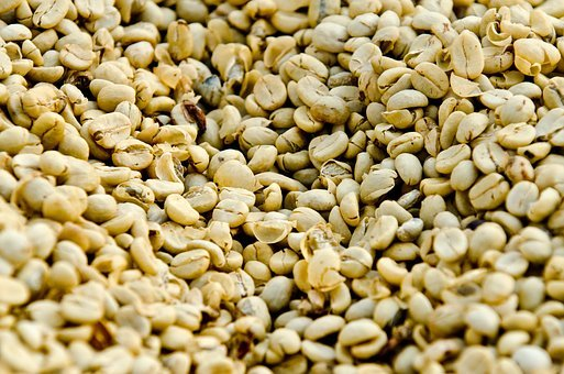 Coffee, Coffee Drying, Guatemala Coffee
