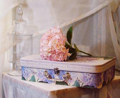 Hortense, Flower, The Suitcase, Decoration