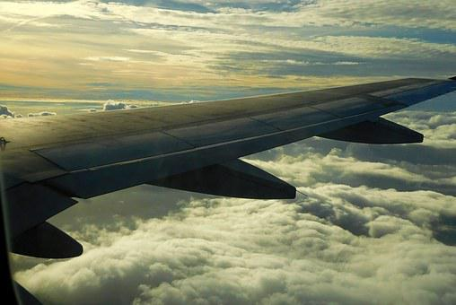 Plane, Flight, Plane Wing, Travel, Airplane Wing View