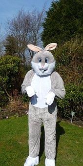 Easter Bunny, Rabbit, Fancy Dress, Costume, Fun, Fluffy