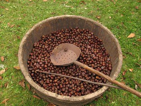 Chestnut Festival, Tradition, Garfagnana Tuscany