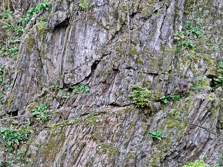 Stone Wall, Mountains, Limestone, Green, Forest, Moss