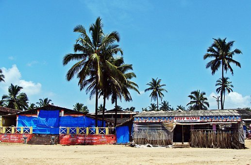 Goa, Bogmalo Beach, Arabian Sea, Coconut Palm, Sand