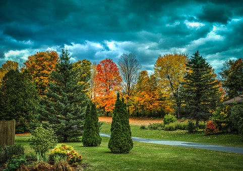 Vermont, Foliage, Fall, Autumn, Landscape, Trees