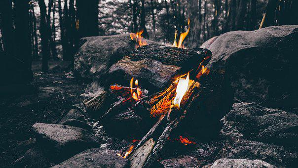 Ash, Burning, Campfire, Fire, Firewood, Flame, Forest