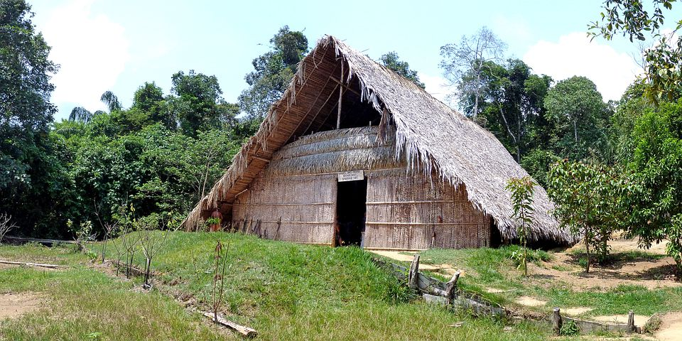 Brazil, Rainforest, Nature, Tropical, Amzonas, Hut