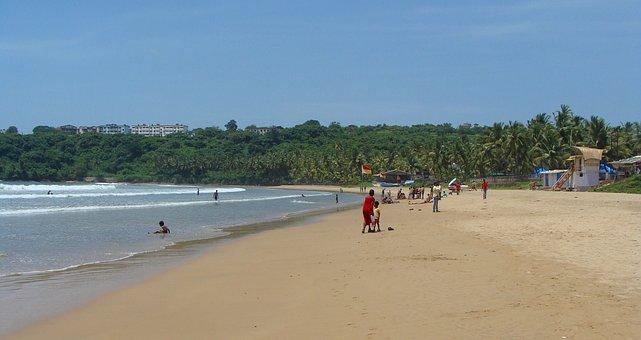 Goa, Bogmalo Beach, India, Beach, Palm Trees