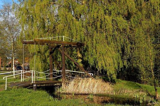 Wooden Bridge, Transition, Hängeweide