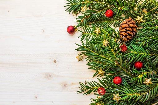 Berry, Branch, Christmas, Christmas Balls