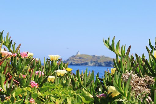 Corsican, Sea, Side, Holiday, Cap Corse