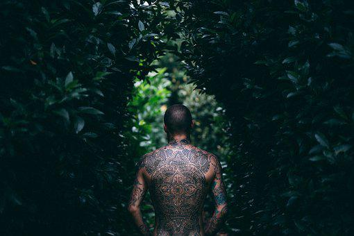 Adult, Art, Back View, Bald, Dark, Leaves, Man, Model