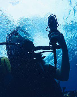Diver, Diving, Exploration, Man, Ocean, Swimming