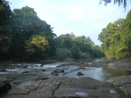 Nature, Kalimantan, Forest, Water, River, Stream, Rocks
