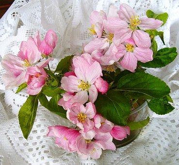 Apple Blossom, Flower, Arrangement, Pink Blossom