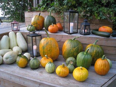 Pumpkins, Arrangement, Colors, Autumn, Lamps, Light