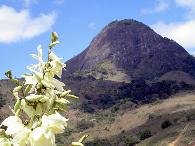 Brazil, Pedra Bonita Mg, Nature, Green, Beauty, Stone