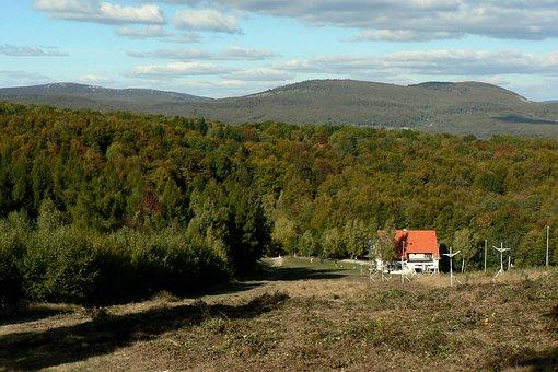 Slovakia, Little Carpathians, Forest, Autumn