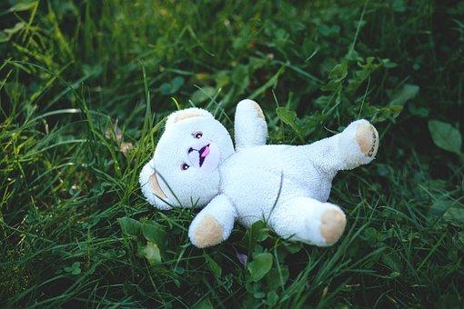 Cute, Field, Grass, Stuffed Animal, Teddy Bear, Toy