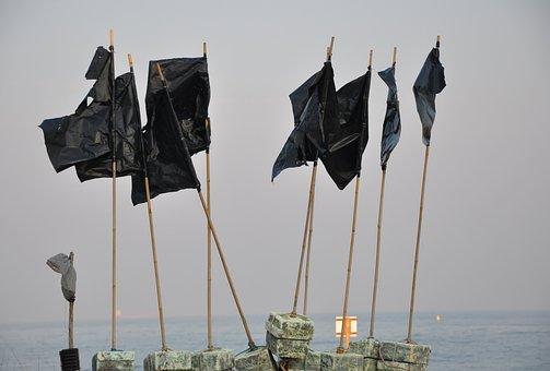 Pennants, Sea, Black