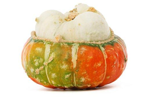Autumn, Fall, Food, Fresh, Gourd, Halloween, Harvest