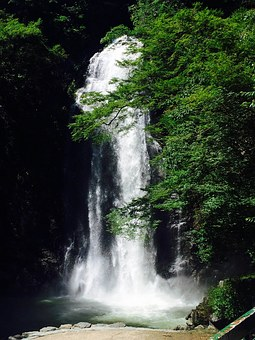 Waterfall, Water, Minoo, Mino Park, Japan