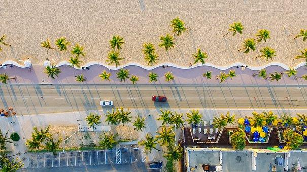 Beach, Buildings, Cars, Palm Trees, Road, Sand