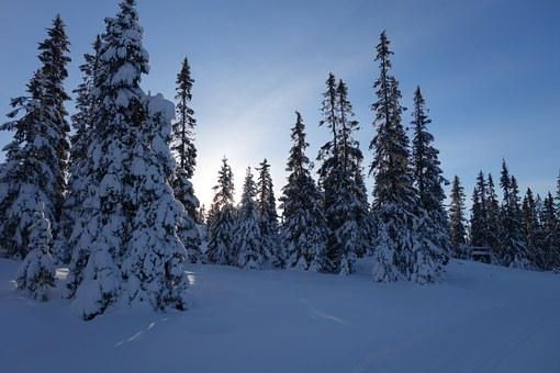 Snow, Winter, Mountain, Norway, Lillehammer, Hafjell