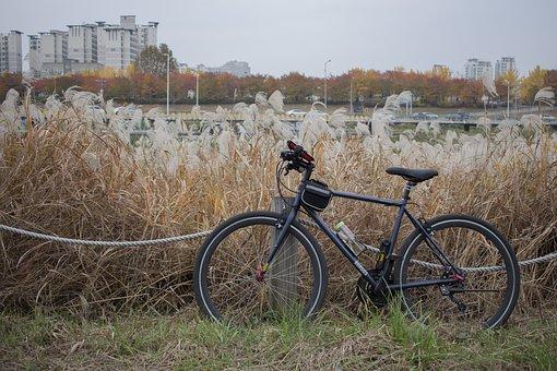 Bike, Hybrid, Hybrid Bicycles, Burgos, Black Molly Bike