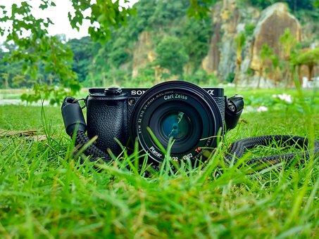 Camera, Field, Grass, Lens, Sony