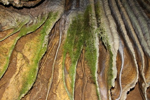 Moss, Limescale, Cave, Stone, Rock, Water