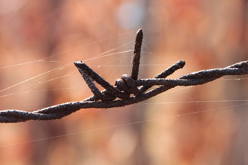 Barbed, Close-up, Iron, Old, Rusty, Wire, Industries