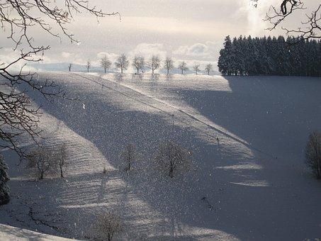 Snowfall, Winter Mood, Sleigh Ride, Mountains, Snow