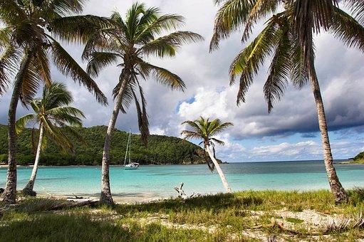 Caribbean, Island, Tropics, Tropical, Beach, Summer