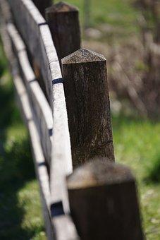 Fence, Pillar, Wood, Away, Demarcation, Nature, Web